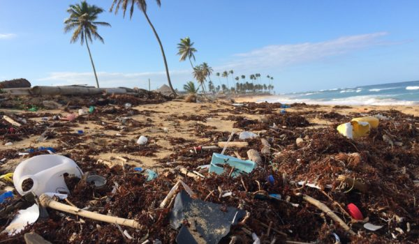 Plastic waste in the world's oceans